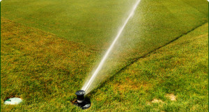 An in-ground sprinkler system watering a nice lawn.